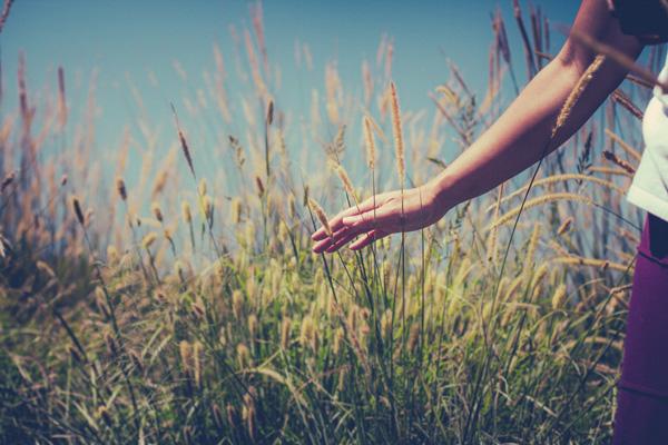Person-in-Wheat-Field-Religious-Stock-Photograph-w