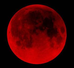 bloodmoon1w