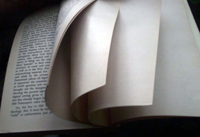 Blank_page_intentionally_end_of_book4in