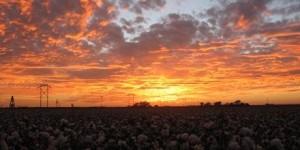 Ropesville TX Sunset