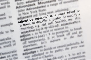 Dictionary definition of adjective