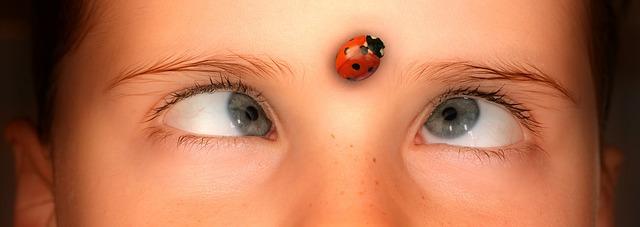 eyes-1192864_640